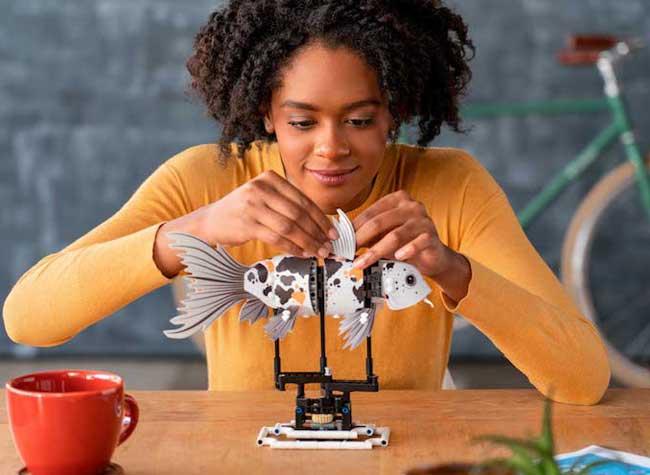lego forma jeu construction adulte mecanique 2 - FORMA, le Jeu de LEGO Mécanique pour Grands Enfants