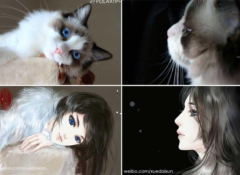 Chats Personnages Illustration Xuedaixun, Elle Transforme les Photos de Chats en Personnages de BD
