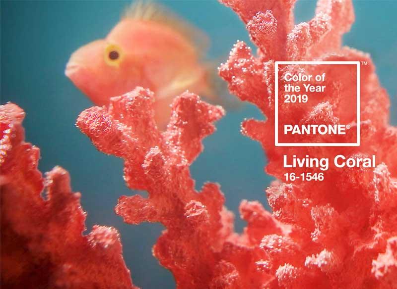 couleur pantone living coral annee 2019 1 - La Couleur de l'Année 2019 sera Rose Corail selon Pantone