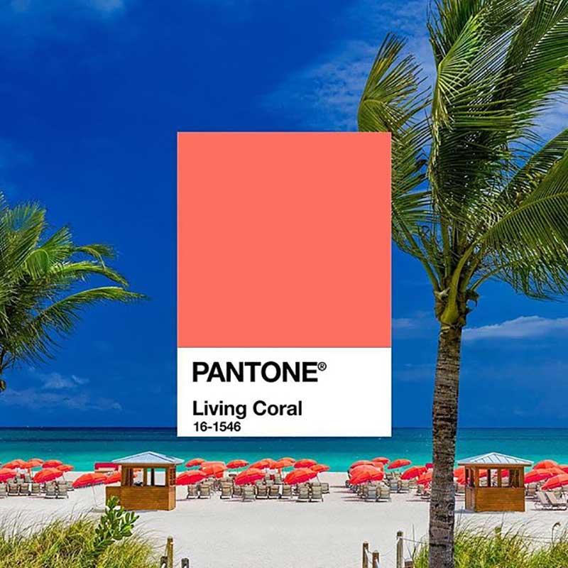 couleur pantone living coral annee 2019 2 - La Couleur de l'Année 2019 sera Rose Corail selon Pantone