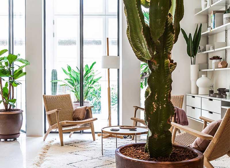 renovation appartement barcelone ylab arquitectos 1 - Intérieur Ensoleillé pour cet Appartement Rénové à Barcelone