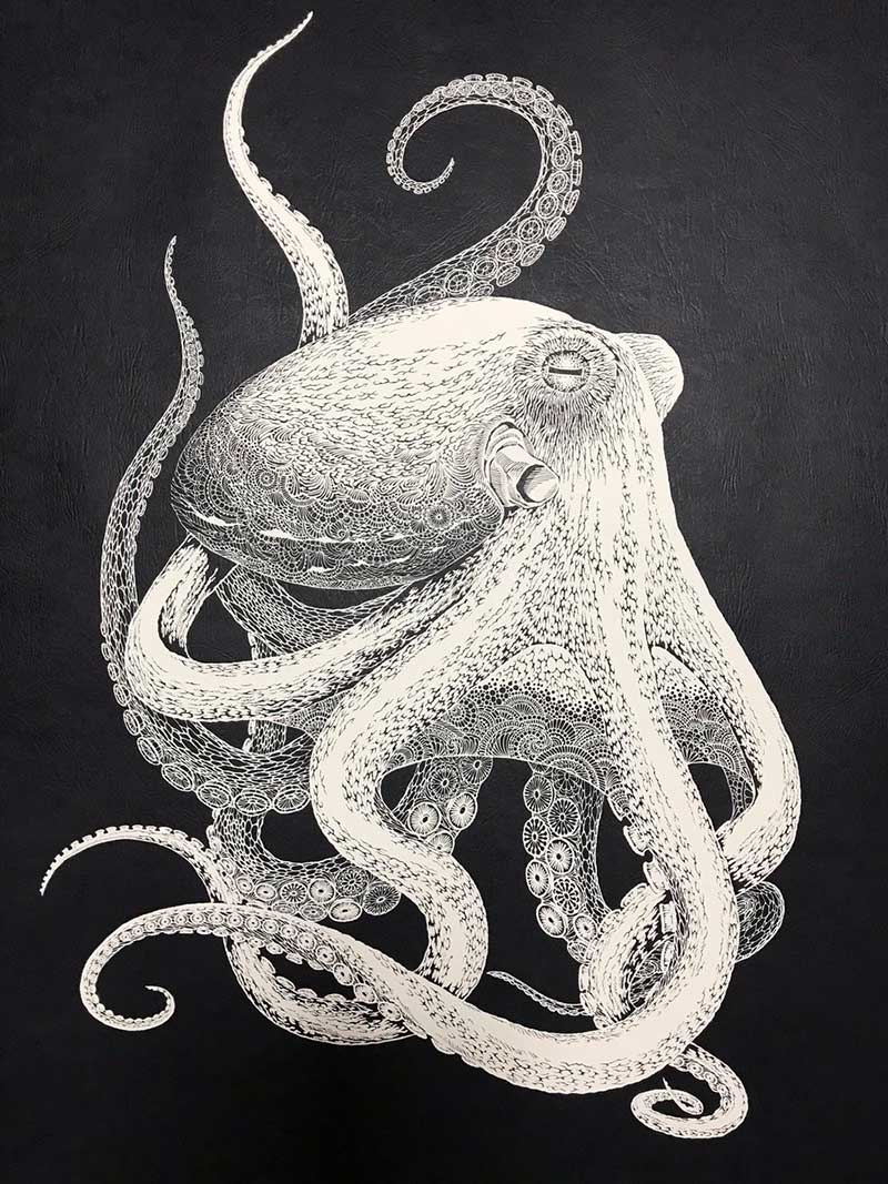 pieuvre octopus sculpture papier kirie masayo fukuda 1 - Saisissante Pieuvre en Dentelle Kirie Découpée dans une Feuille de Papier