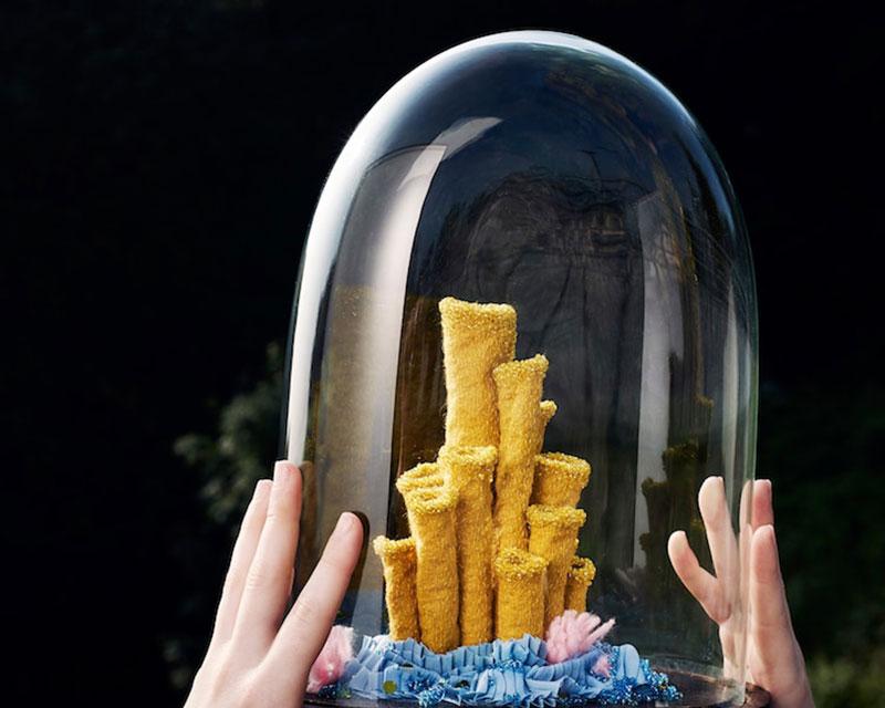 Sculptures de Corail, Ces Sculptures de Corail Rappellent la Nécessité de Protéger nos Océans