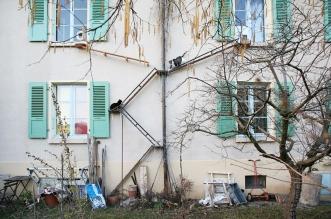 echelles chats ville cat ladders brigitte schuster 2 331x219 - Échelles pour Chats Fleurissent sur les Maisons en Suisse
