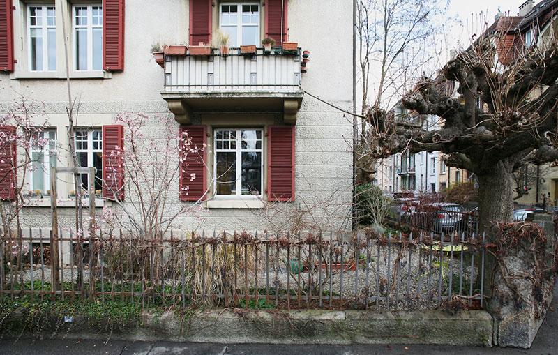 echelles chats ville cat ladders brigitte schuster 9 - Échelles pour Chats Fleurissent sur les Maisons en Suisse