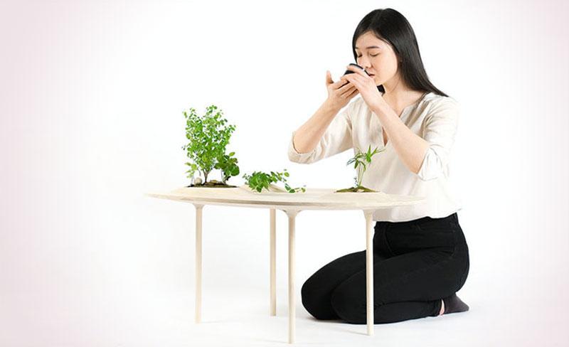 tables basses plantes vertes wooyoo 1 - Wooyoo, les Tables Basses en Bois pour Plantes