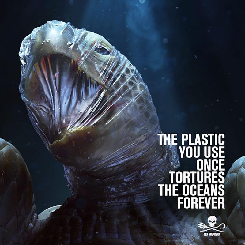 sea shepherd campagne pub 2019, Animaux Marins Étouffés par le Plastique dans une Campagne Pub