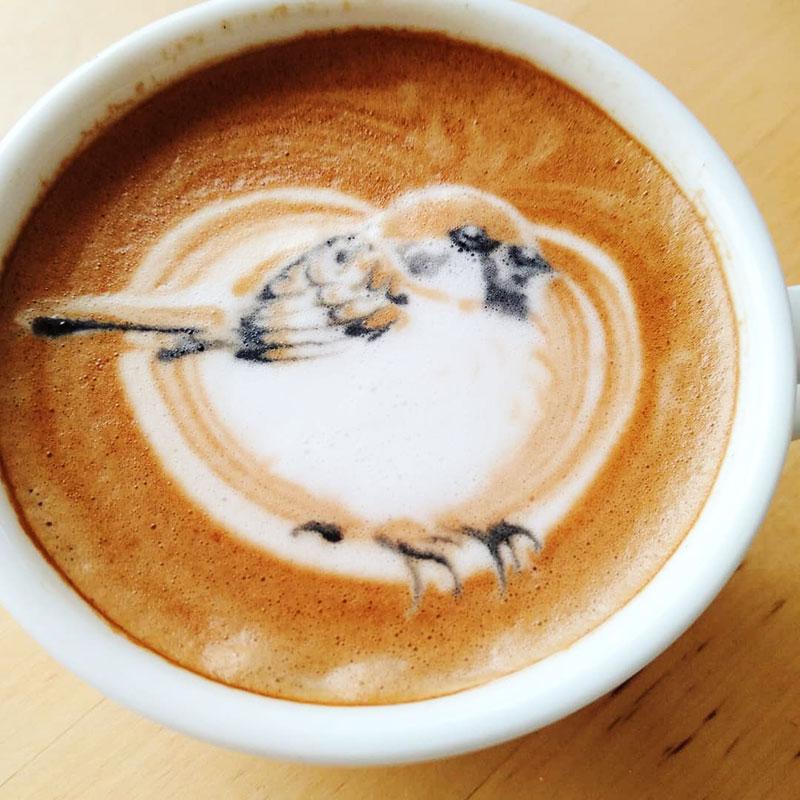 latte art oiseaux dessins cafe lait 1 - L'Art de Dessiner des Oiseaux dans du Café au Lait