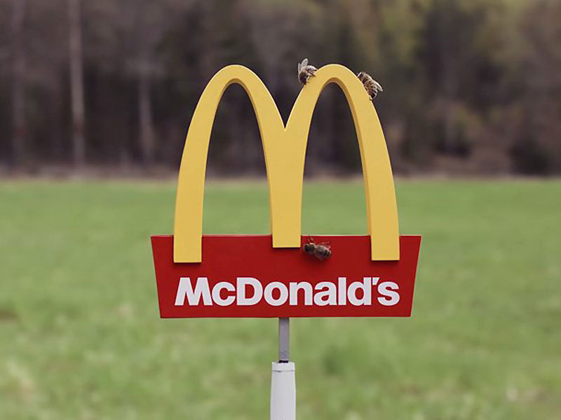 plus petit mcdonalds au monde mchive abeilles 2 - McDonald's Ouvre pour les Abeilles des Ruches McHive