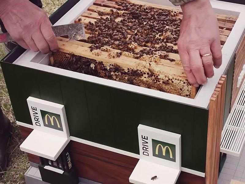 plus petit mcdonalds au monde mchive abeilles 3 - McDonald's Ouvre pour les Abeilles des Ruches McHive