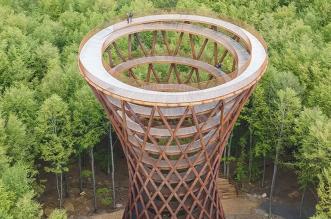tour Observatoire foret effekt danemark 12 331x219 - Dans la Forêt Danoise une Tour Observatoire de 45 m Ouvre au Public