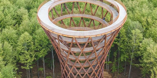 tour Observatoire foret effekt danemark 12 660x330 - Dans la Forêt Danoise une Tour Observatoire de 45 m Ouvre au Public