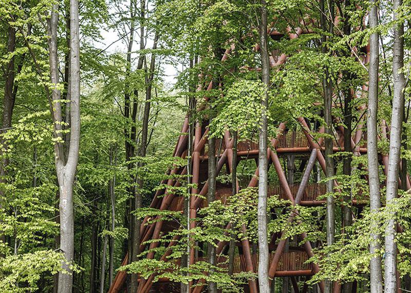 tour Observatoire foret effekt danemark 7 - Dans la Forêt Danoise une Tour Observatoire de 45 m Ouvre au Public