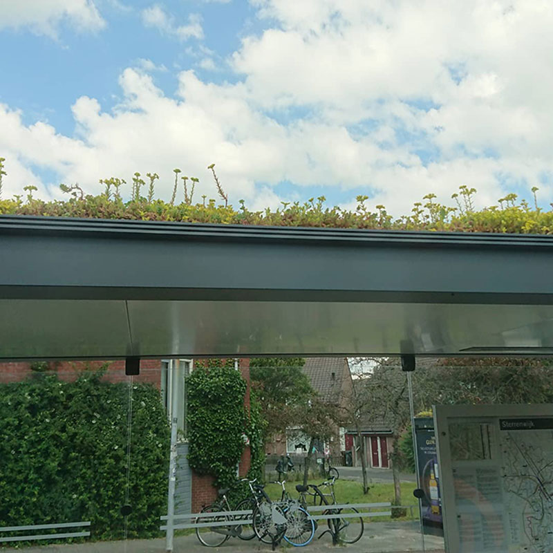 arrets de bus refuges abeilles utrecht 03 - 316 Arrêts de Bus Transformés en Refuges pour Abeilles aux Pays-Bas