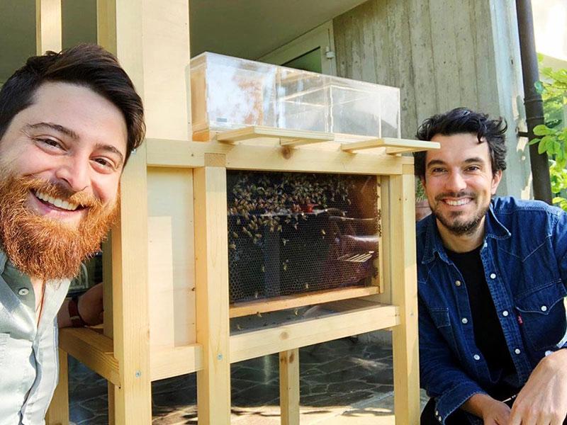 Beeing B-box, Beeing B-box, une Ruche pour le Balcon et le Jardin (video)