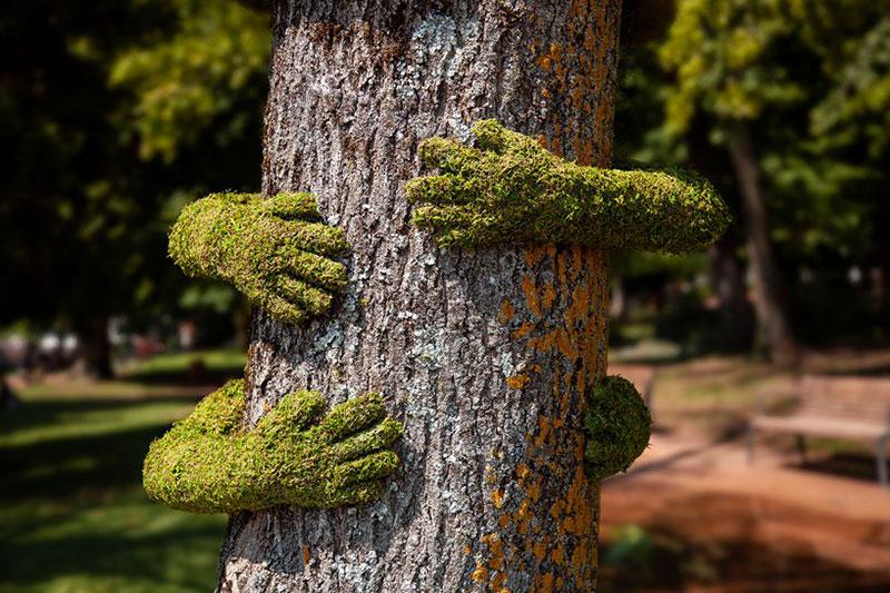 Tree hug Mr Plant, Tree Hug par l'Artiste Mr Plant à Annecy