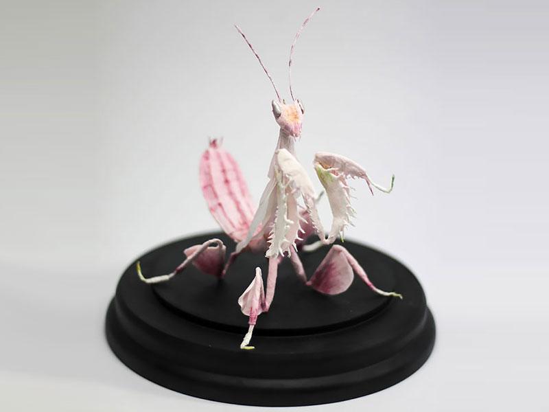 sculptures papier Tina Kraus, Elle Sculpte des Insectes en Papier au Réalisme Saisissant