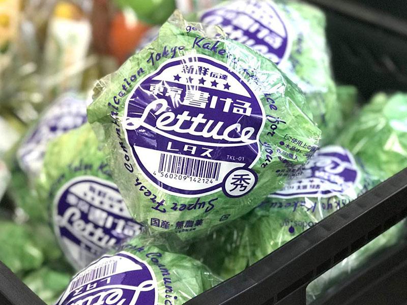 Bloc Notes salade design, Cette Vraie Fausse Salade est un Bloc Notes Venu du Japon