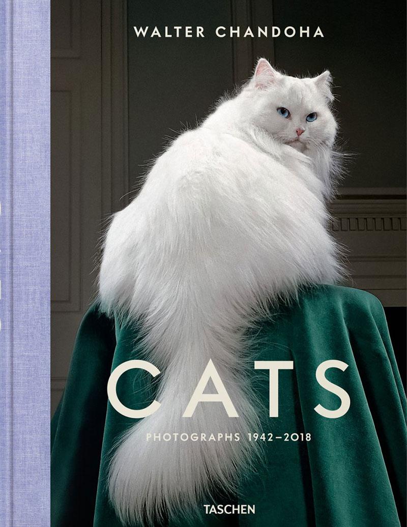 chats walter chandoha, 50 ans de Portraits de Chats par Walter Chandoha (Livre)