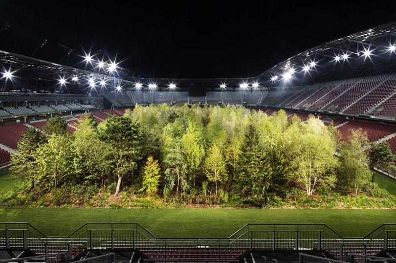 Stade football foret primaire, Stade de Football Transformé en Forêt Primaire d'Europe Centrale