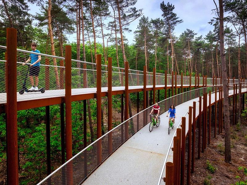 vélo dans les arbres, Faire du Vélo dans les Arbres, une Expérience pour tous en Belgique