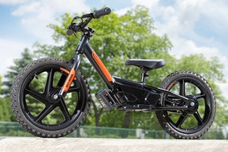 Harley-Davidson IRONe, Harley-Davidson IRONe, le Velo Electrique des Petits Bickers