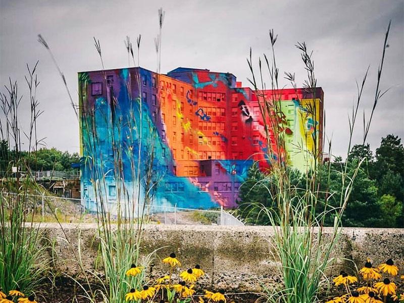RiskRock artiste, L'Artiste RiskRock Transforme un Hôpital Abandonné en Fresque Geante