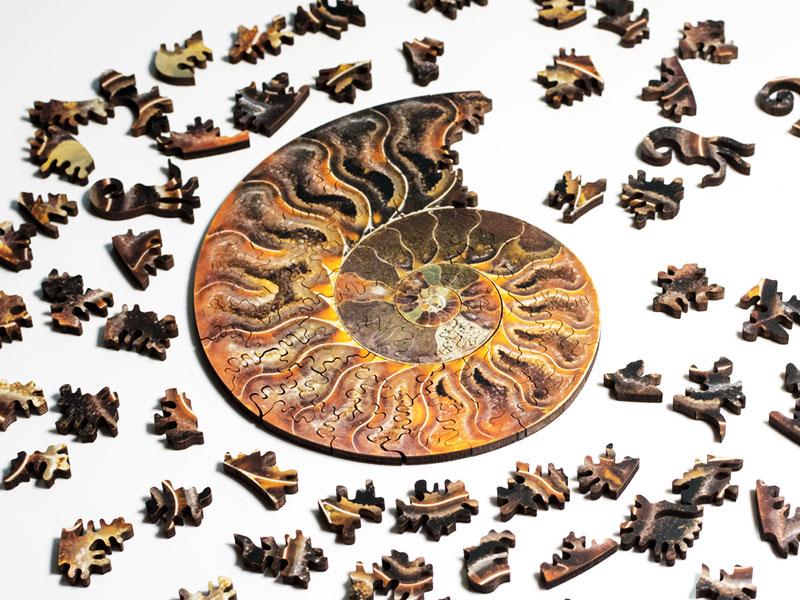 Puzzle Ammonite Nervous System, Puzzle Ammonite et Nautilus en Spirale par Nervous System (video)