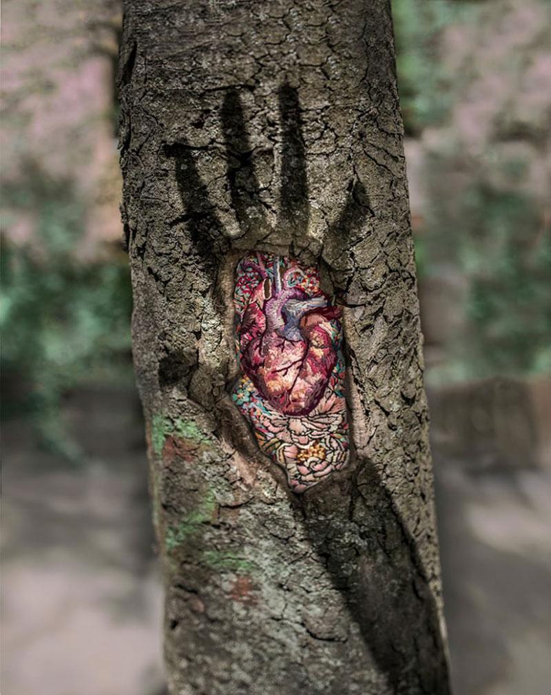 broderies Diana Yevtukh, Broderies sur les Cicatrices des Arbres par Diana Yevtukh