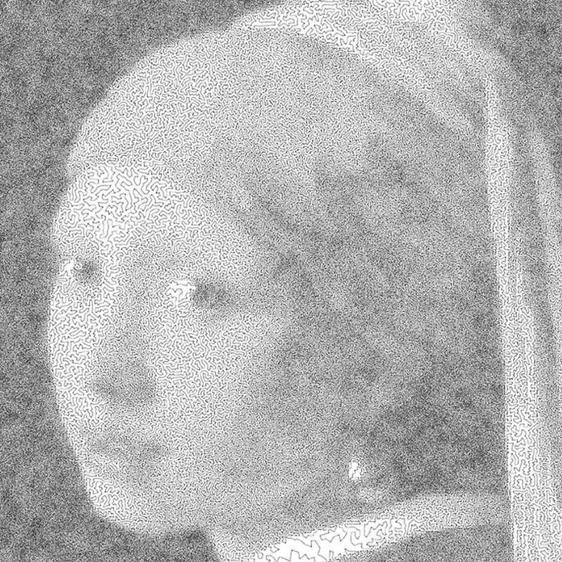 Robert Bosch, Robert Bosch Dessine d'un seul Trait de Complexes Portraits