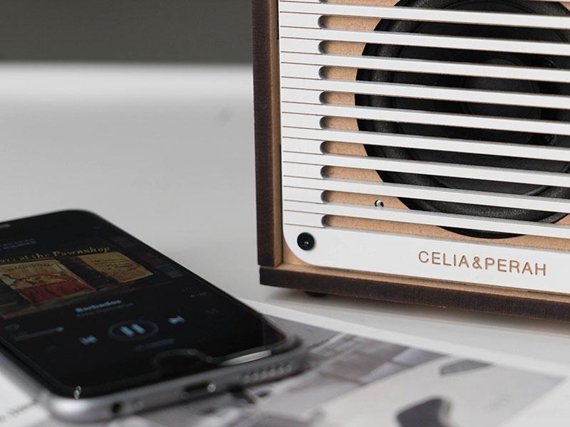 Poste de Radio, Celia & Perah, Poste de Radio Bluetooth en Bois et en Kit