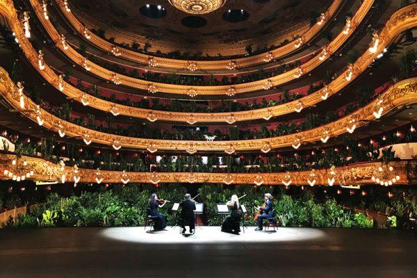 Liceu plantes concert, 2292 Plantes pour un Concert au Grand Théâtre du Liceu à Barcelone