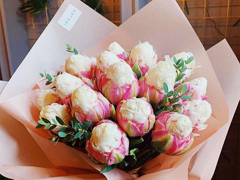 tulipes ice cream fleur glaces 03 - Tulipe Ice Cream, Fleur aux Airs de Glaces à la Chantilly - Photographie, Nature, Jardins, Inspiration, Fleurs, Amazon