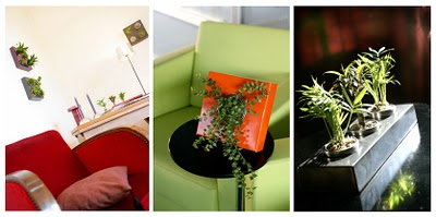 , Flowerbox : De Jolis Murs Fleuris